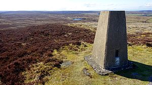Trig point on Bolt's Law